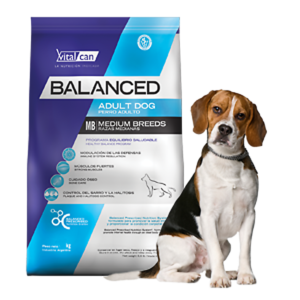 Balanced Adulto Medium por 12 y 20 Kg
