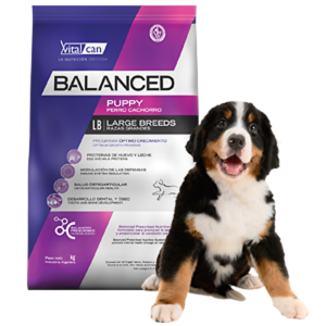 Balanced Puppy Large por 20 Kg