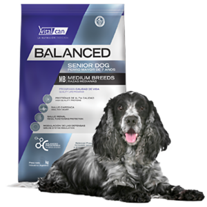 Balanced Senior Dog Small Breed x 7.5 kg