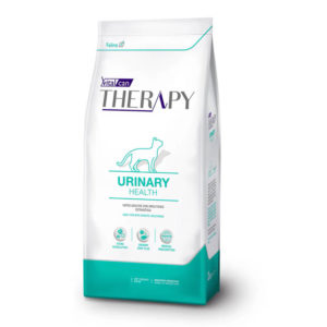 Therapy Urinary gato s/o x 2 y 7,5 kg