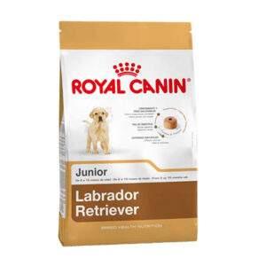 Royal Canin Labrador Retriever Junior por 12 Kg