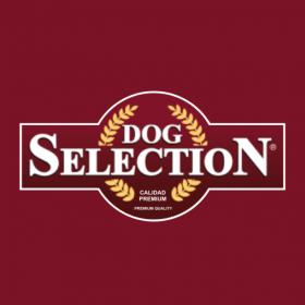 Dog Selection
